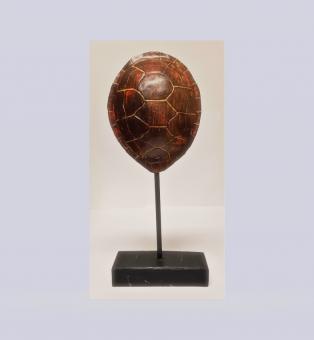 Schildkröte Deko Figur auf Ständer Figur 17,5x14x7 cm B